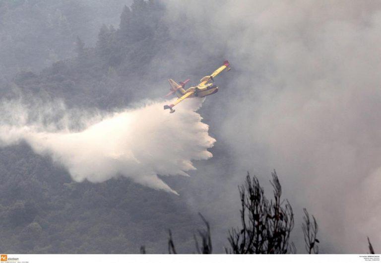 Σέρρες: Φωτιά στην Πορόια από κεραυνό   Newsit.gr