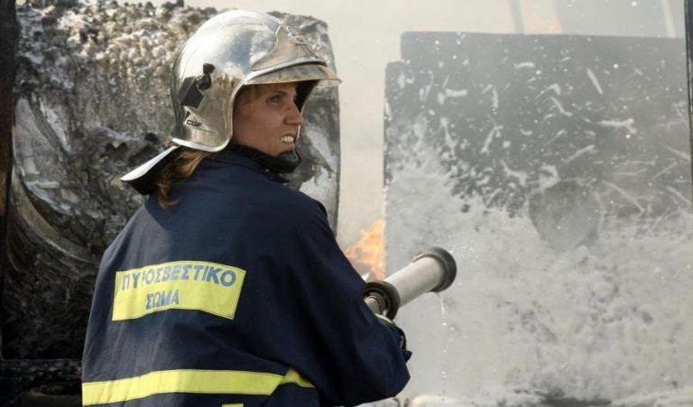 Ιωάννινα: φωτιά σε νταλίκα – Έκλεισε μισή ώρα η Εγνατία | Newsit.gr