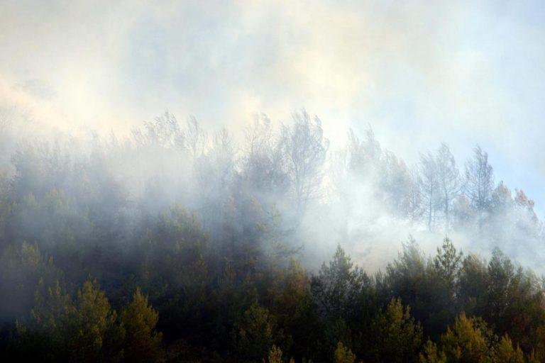 Ηλεία: Φωτιά σε δύσβατη περιοχή της Κρέστενας | Newsit.gr