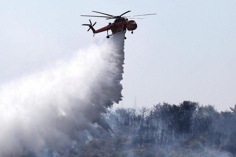 Κρήτη: Μεγάλη πυρκαγιά στον Δραπανιά Κισάμου | Newsit.gr