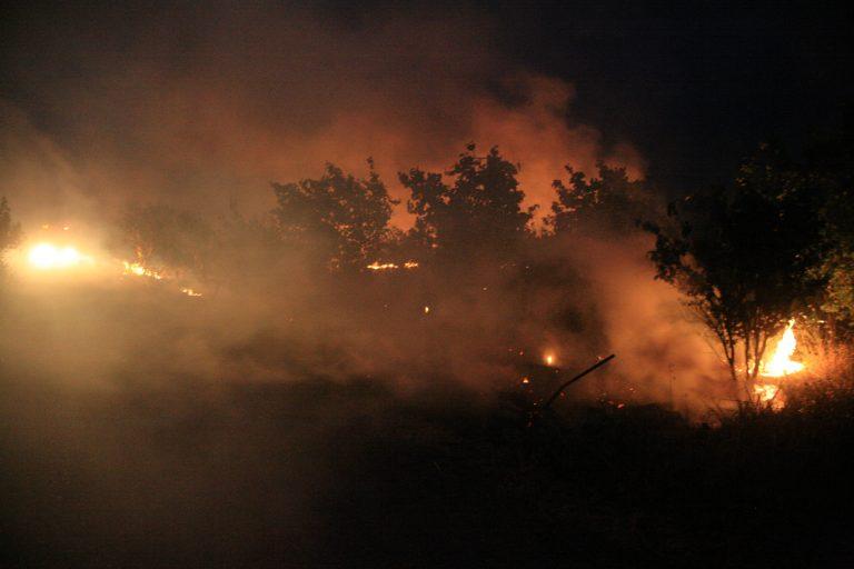 Σε πύρινο κλοιό η μισή Ελλάδα – Συνεχίζουν να καίνε 14 μέτωπα | Newsit.gr