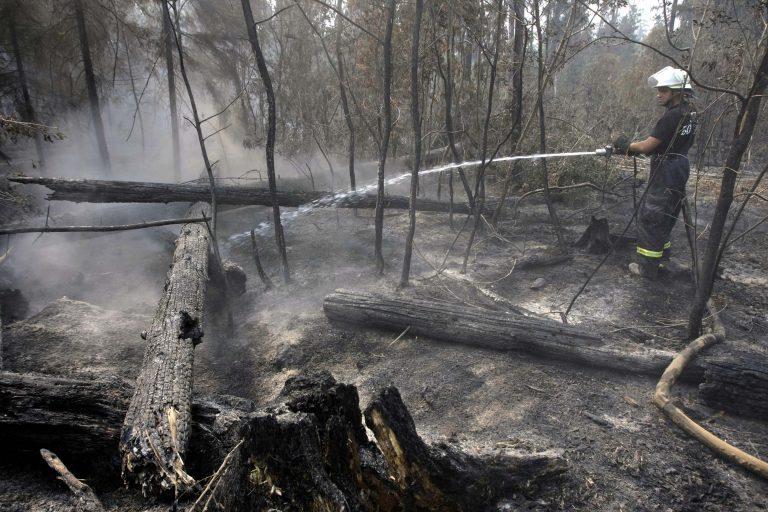Φθιώτιδα: Τέσσερις φωτιές μέσα σε μία ώρα! | Newsit.gr