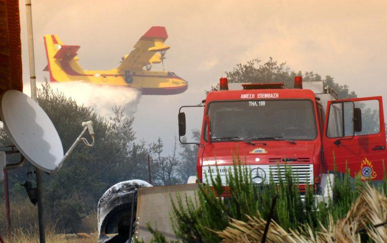 Χαλκιδική: Υπό έλεγχο η φωτιά στη Σιθωνία | Newsit.gr