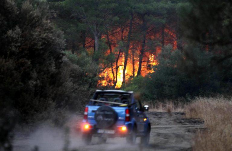Οι φλόγες τύλιξαν τη χώρα – Πάνω από 170 φωτιές από χθες μέχρι σήμερα! | Newsit.gr