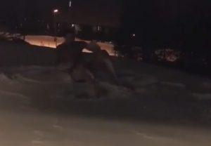 Ο Ιμπραΐμοβιτς δεν «μασάει»! Ξάπλωσε γυμνός στο χιόνι [vid]