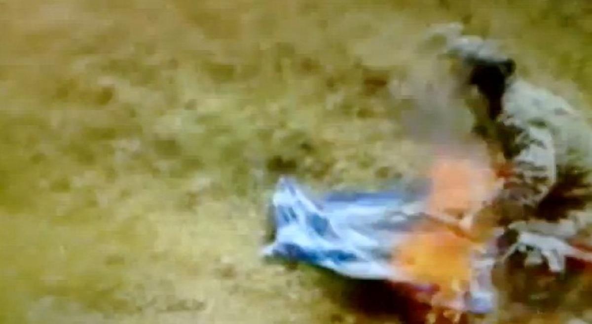 Προβοκάτσια το video με τους Αλβανούς που καίνε ελληνική σημαία στα Καλάβρυτα | Newsit.gr
