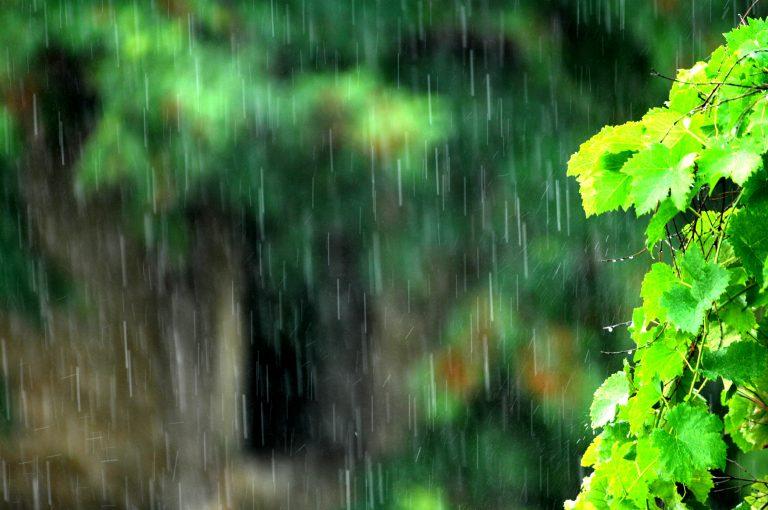 Έρχονται βροχές και καταιγίδες από την Πέμπτη   Newsit.gr
