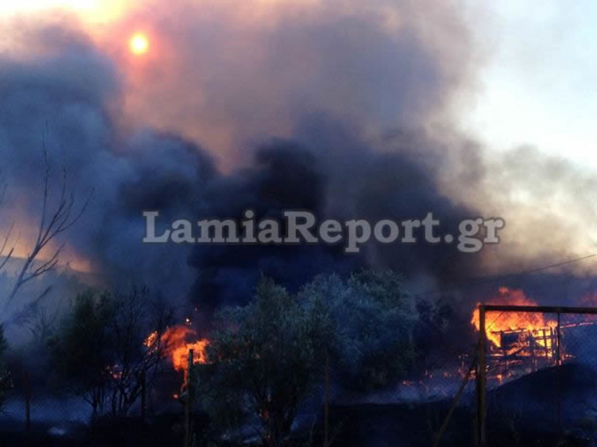 Λαμία: Κινδύνεψαν σπίτια απ' την πυρκαγιά χθες το απόγευμα – ΒΙΝΤΕΟ | Newsit.gr