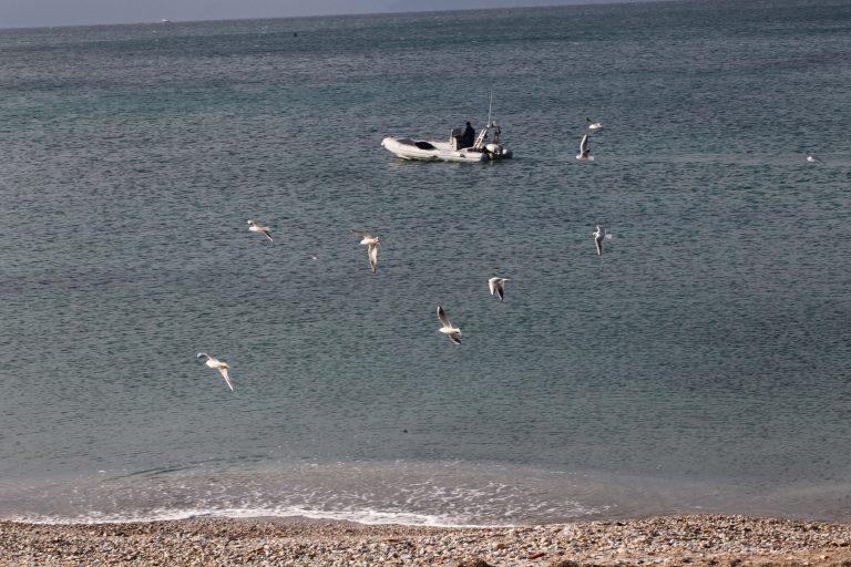 Θάνατος – μυστήριο για πατέρα και γιο που έκαναν υποβρύχιο ψάρεμα | Newsit.gr
