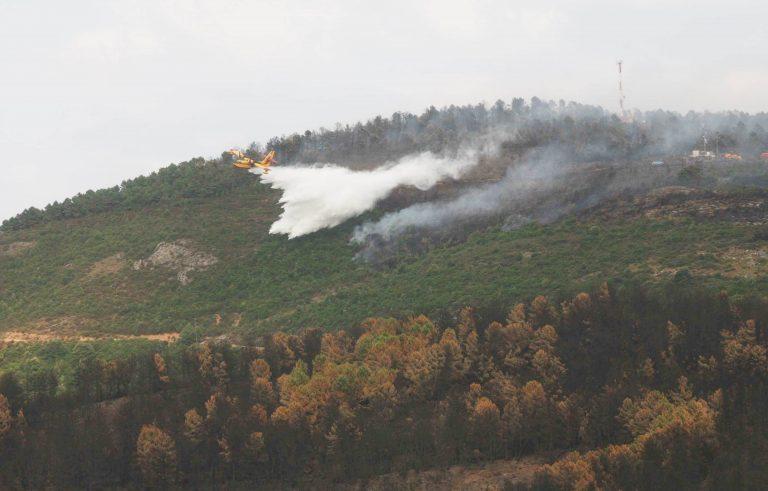 Κάηκαν πάνω από 300 στρέμματα δάσους στη Μαγνησία   Newsit.gr