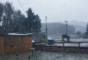Καιρός: Χειμώνας και… χιόνια στο Μέτσοβο! [pics]