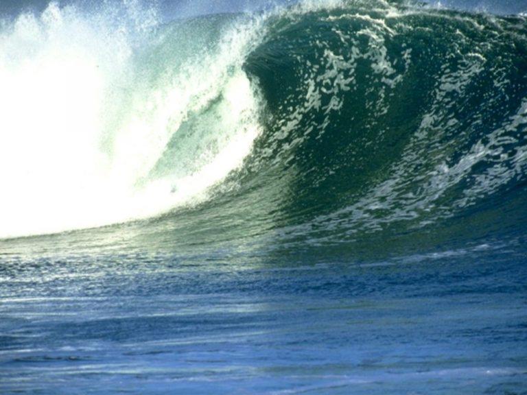 Δείτε online το ωκεανογραφικό ταξίδι του σκάφους «Nautilus» στην Ελλάδα! | Newsit.gr