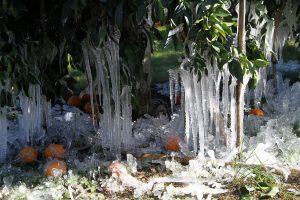 Καιρός: «Παγωμένη» Κυριακή! -2 βαθμοί Κελσίου στα βόρεια!