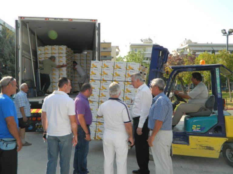 15 τόνους πεπόνια θα μοιράσει αύριο ΔΩΡΕΑΝ ο Δήμος Περιστερίου | Newsit.gr