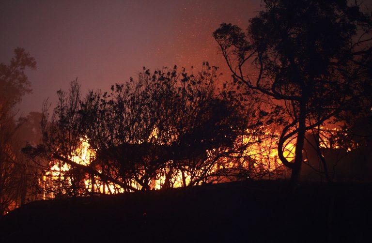 Μετά τις πλημμύρες η Αυστραλία παραδόθηκε στις φλόγες | Newsit.gr