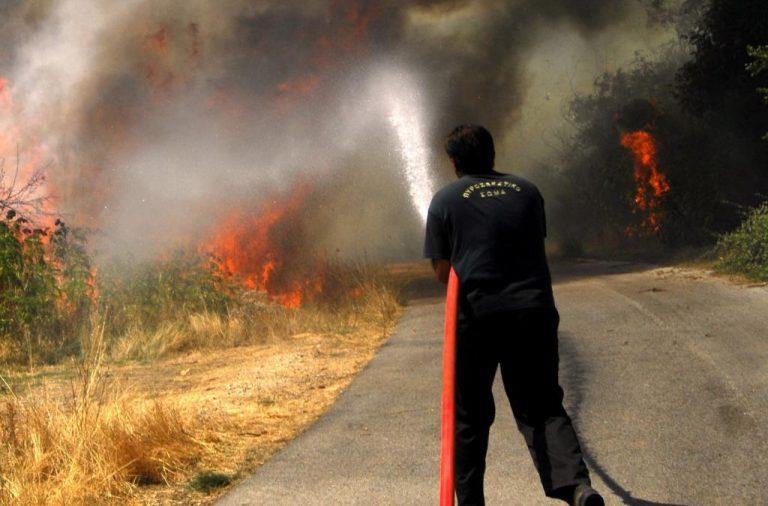 Λακωνία: Πυροσβέστης τραυματίστηκε στη φωτιά | Newsit.gr