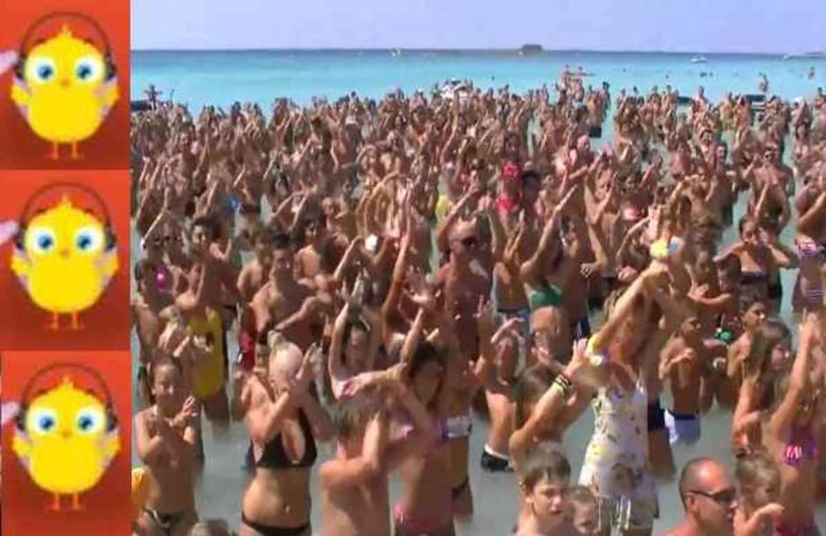 Παραλήρημα κόσμου για το «Πουλάκι τσίου» –  ΔΕΙΤΕ τι έκαναν μέσα στη θάλασσα! | Newsit.gr
