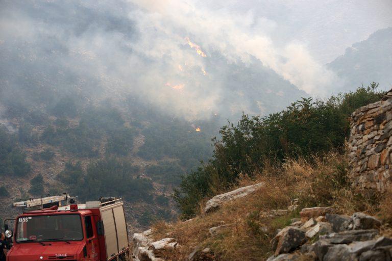 Υπό μερικό έλεγχο η φωτιά στα Μέγαρα | Newsit.gr