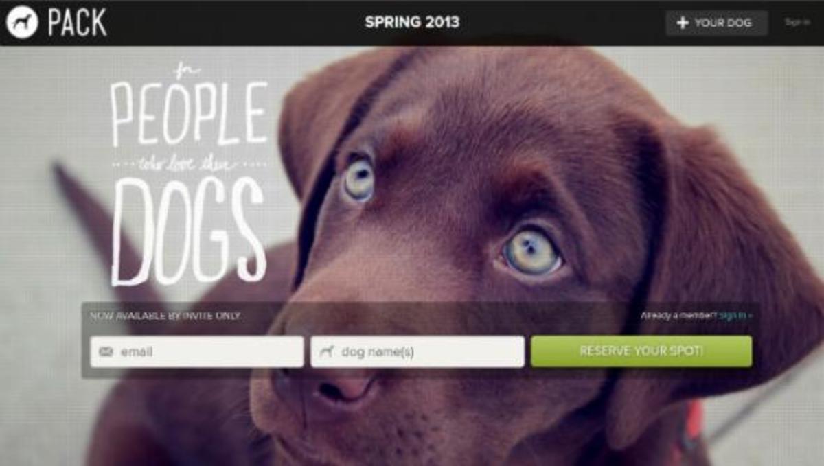 Κοινωνικό Δίκτυο για… σκύλους!   Newsit.gr