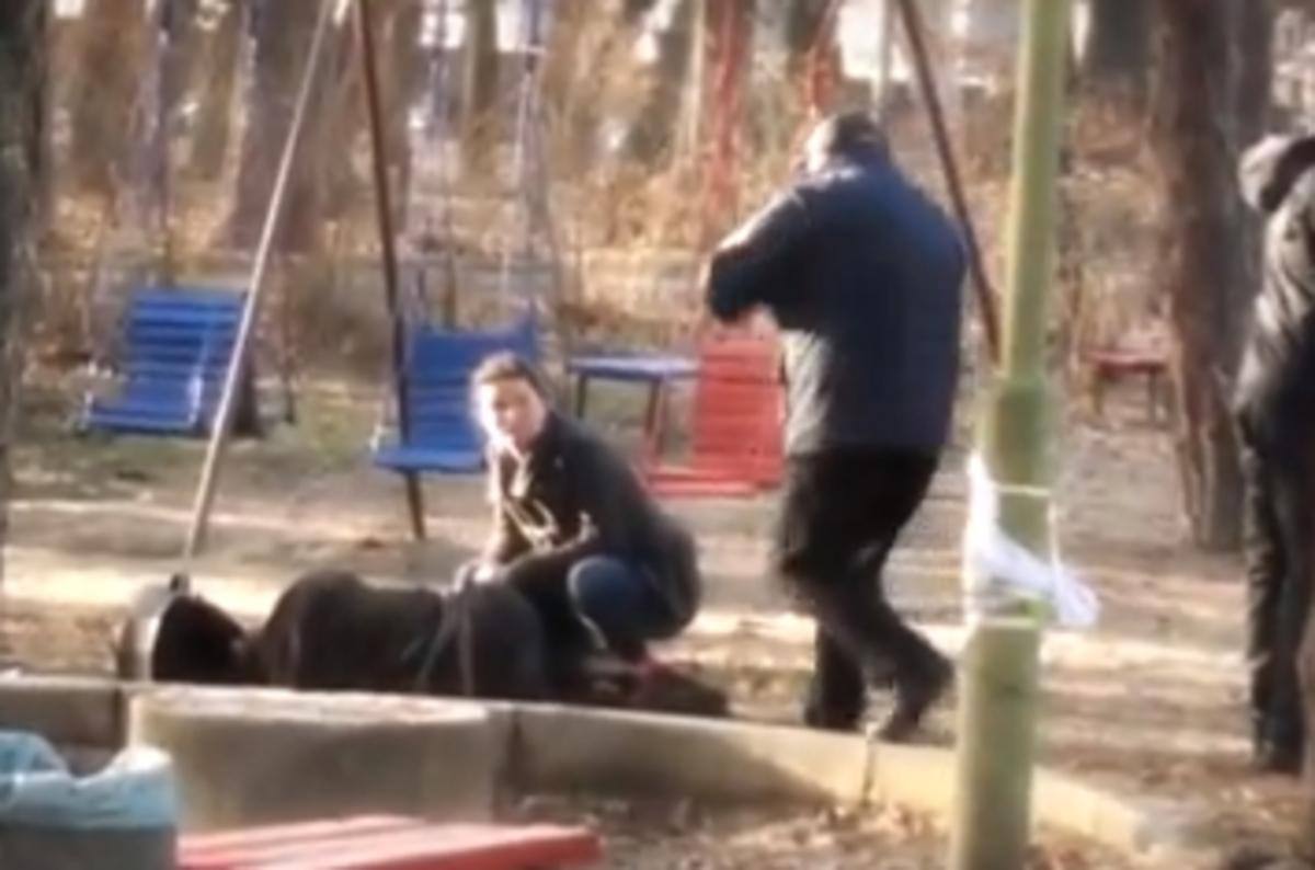 Πολύ ξύλο σε ραντεβού οπαδών στη Βουλγαρία (VIDEO)   Newsit.gr