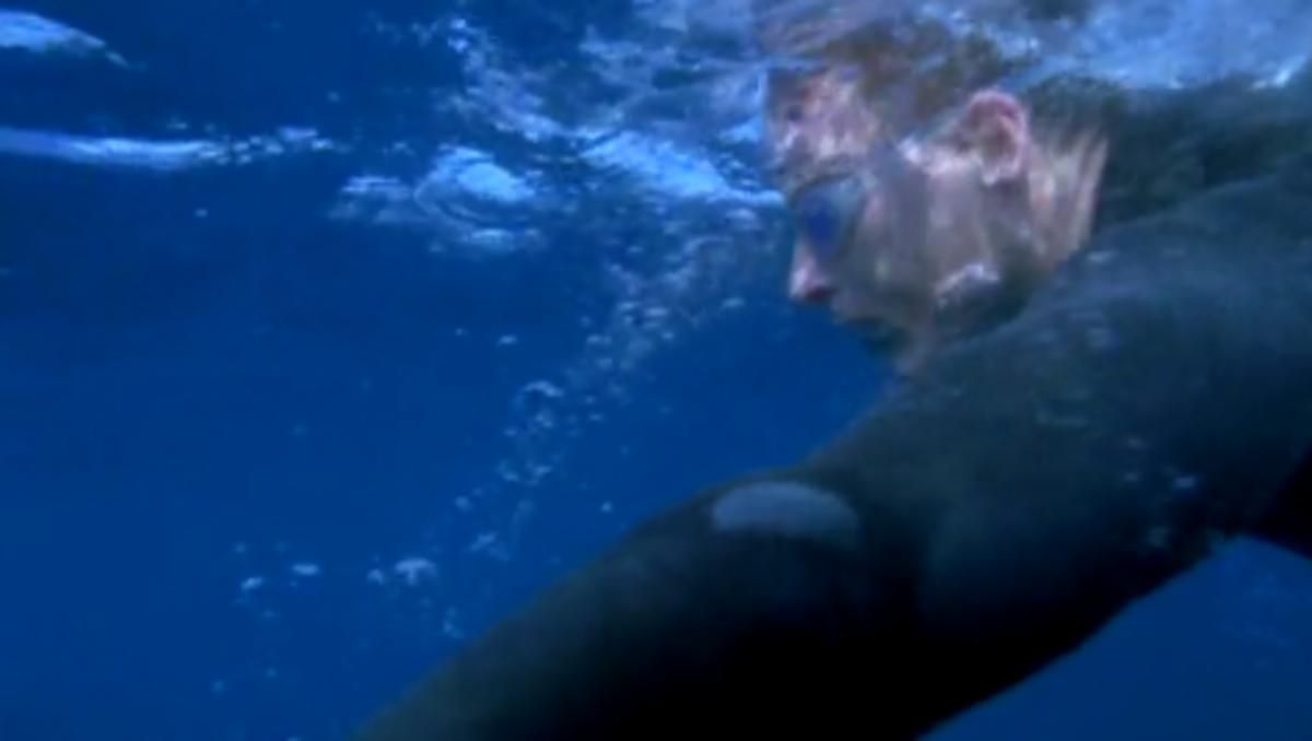 Navy seals.Εκπαίδευση στον ωκεανό.Βίντεο | Newsit.gr