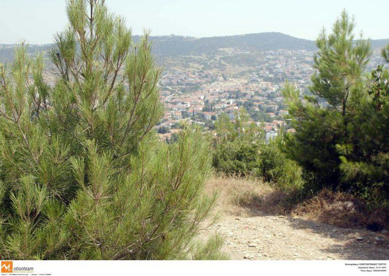 Υπό έλεγχο οι φωτιές σε Ζάκυνθο και Σέιχ Σου!   Newsit.gr
