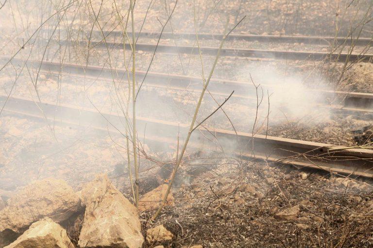 Θεσσαλονίκη: Στάχτη 200 στρέμματα κατά μήκος σιδηροδρομικής γραμμής | Newsit.gr