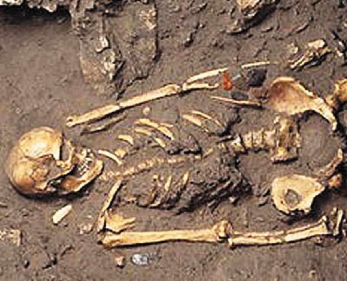 Λασίθι: Βρήκε στο διαμέρισμά του ανθρώπινο σκελετό! | Newsit.gr