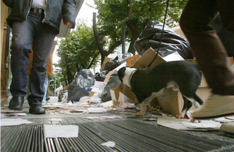 Θεσσαλονίκη: Κάποιος να μαζέψει τα σκουπίδια… | Newsit.gr