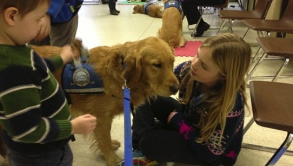 Παρηγορητικά σκυλιά για τα παιδιά – θύματα του μακελάρη. ΒΙΝΤΕΟ | Newsit.gr