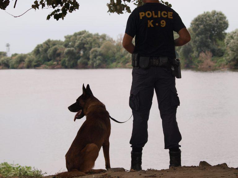 Ενισχύεται η «Ξένιος Ζευς» με 16 αστυνομικούς σκύλους | Newsit.gr