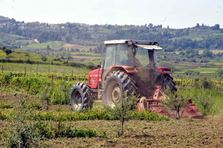 Κρήτη: 38 εκατομμύρια ευρώ πήραν παράνομα χιλιάδες αγρότες!   Newsit.gr