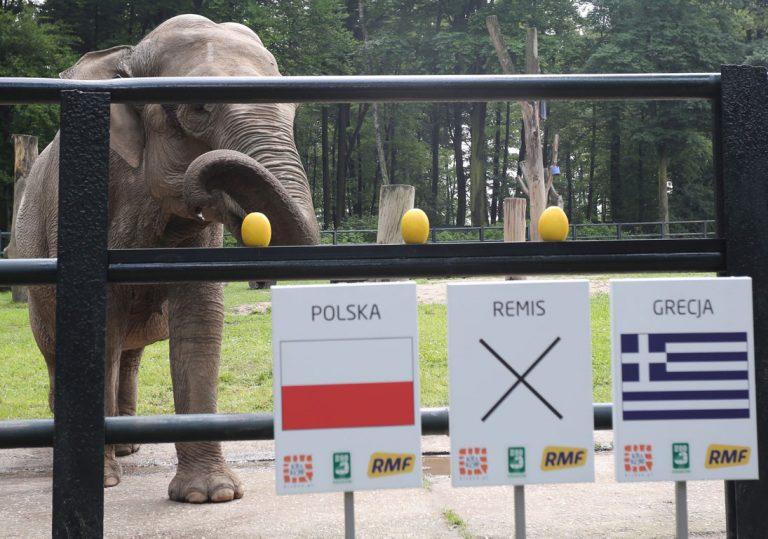 Η Ελλάδα θα ηττηθεί από την Πολωνία! ΒΙΝΤΕΟ | Newsit.gr