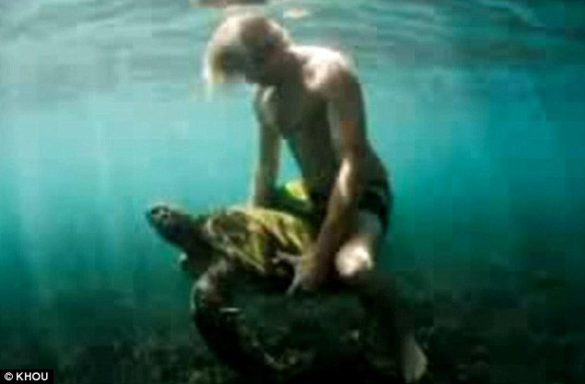 Παρενόχλησε σεξουαλικά μια… χελώνα! | Newsit.gr