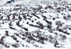 Καιρός: Χιονοθύελλα τώρα στη Μυτιλήνη – Κλειστό το οδικό δίκτυο