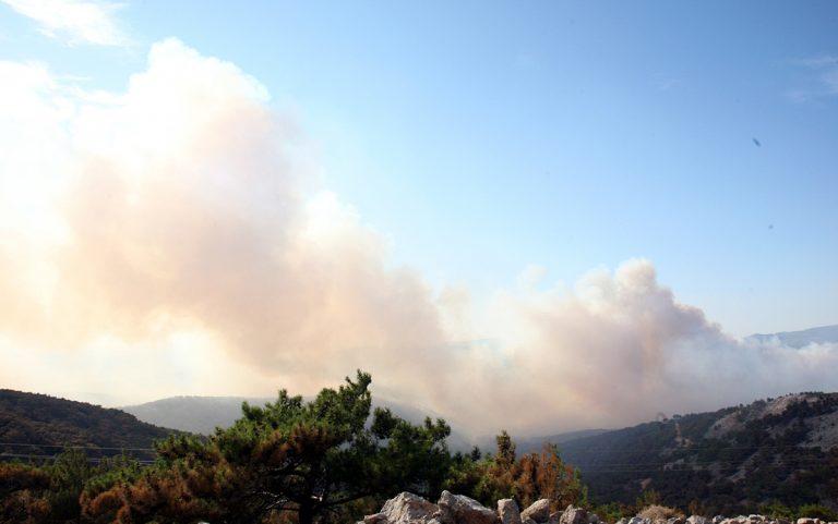 Τρία μέτωπα στη Χίο – Ολική καταστροφή στο νησί | Newsit.gr
