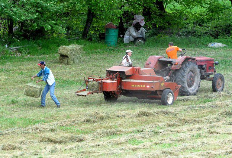 Μετά τις 15 Δεκεμβρίου η επιδότηση στους αγρότες | Newsit.gr