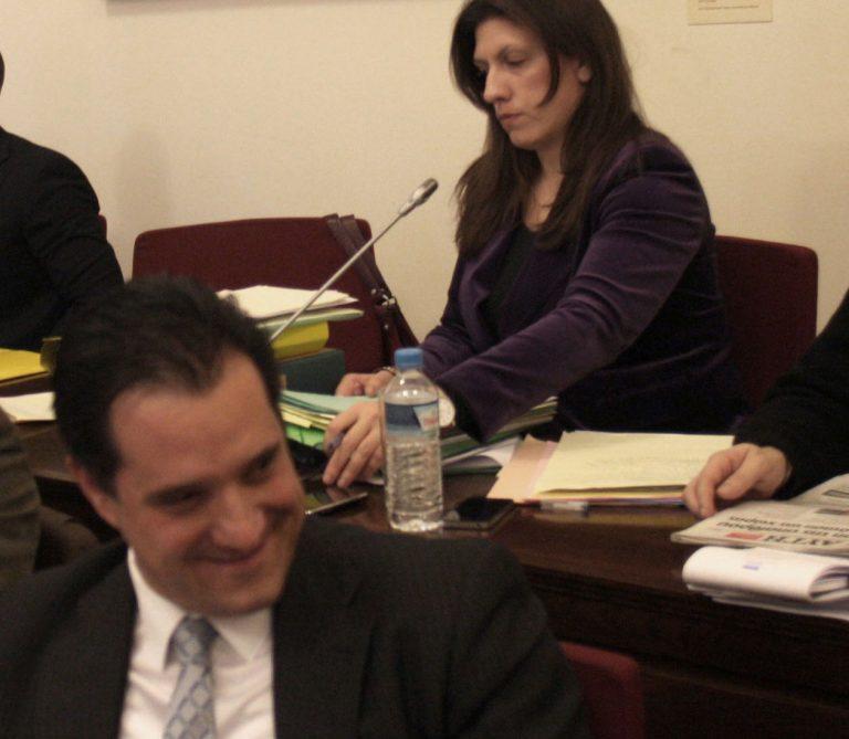 Άδωνις: «Αν φοβάται η κα Κωνσταντοπούλου να προτάξω το κορμί μου» | Newsit.gr
