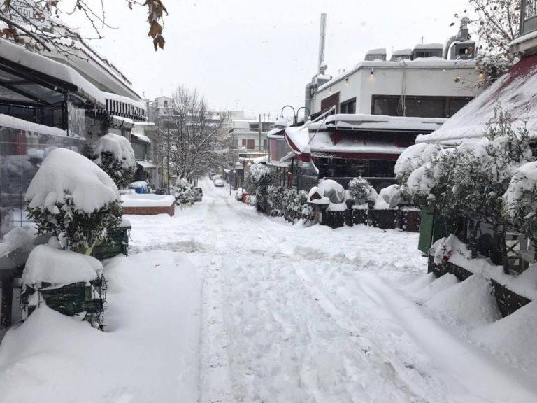 Καιρός Λάρισα: Μετά τα χιόνια ο παγετός – Πέφτει η θερμοκρασία στους -10 βαθμούς Κελσίου [pics] | Newsit.gr