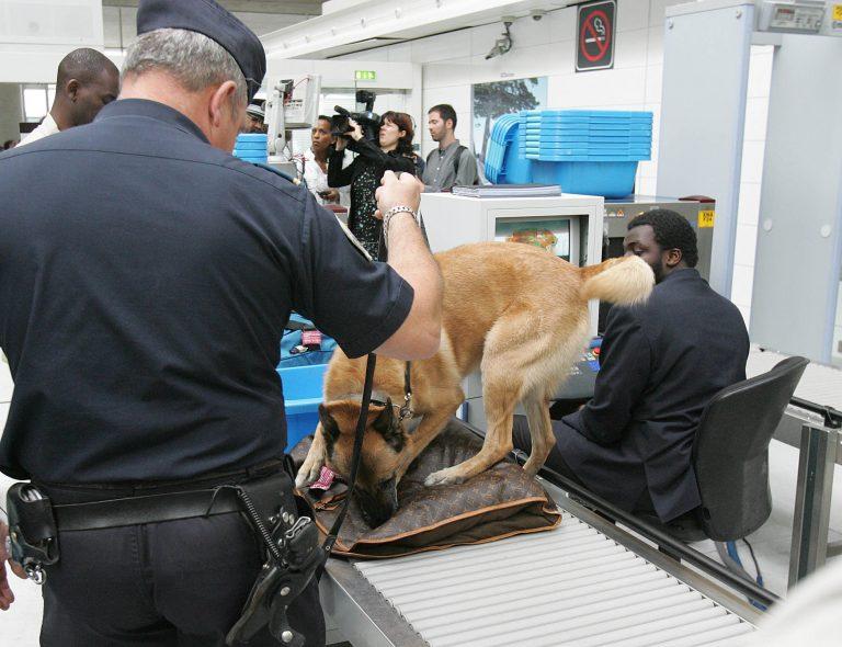 Συνελήφθη για απειλή φάρσα σε αεροσκάφος | Newsit.gr