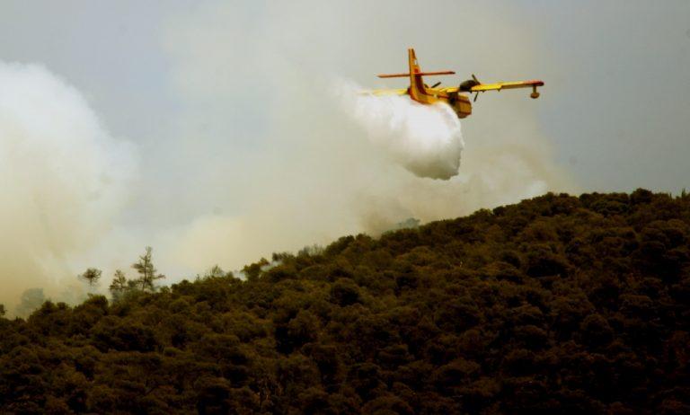 Υπό έλεγχο οι φωτιές σε Αργολίδα και Εύβοια | Newsit.gr