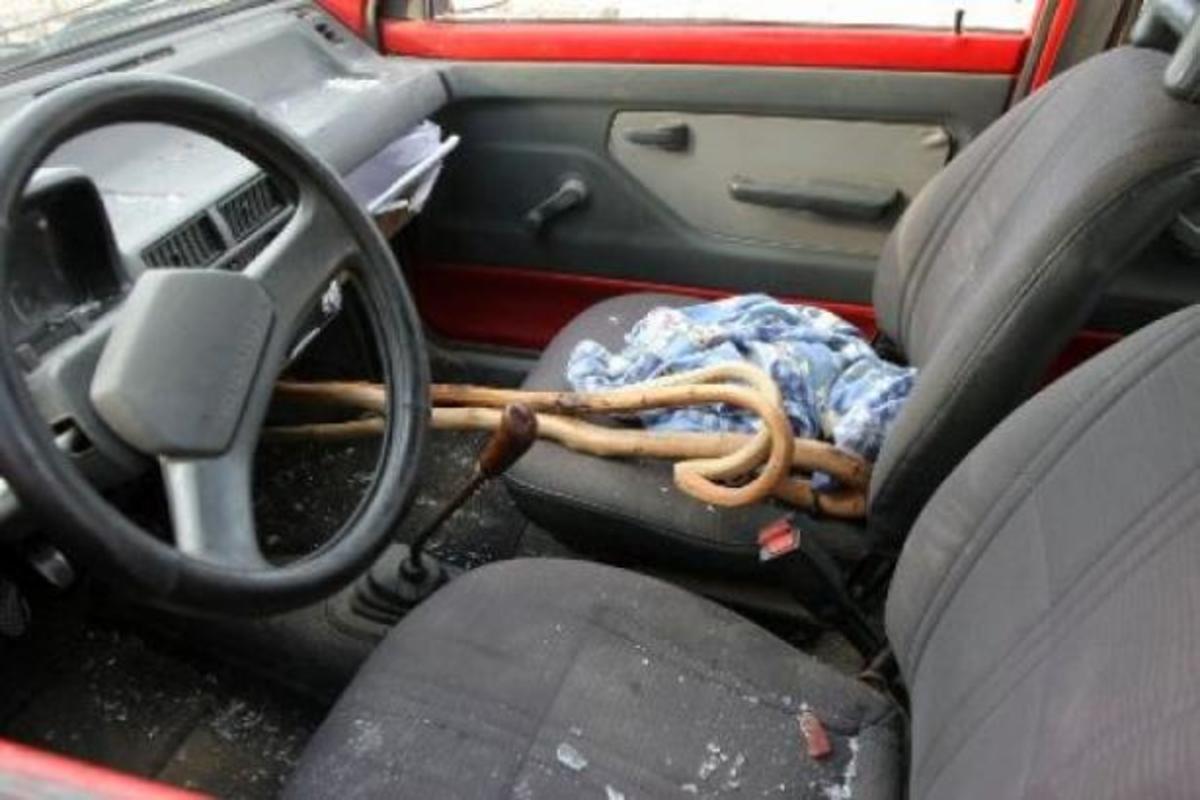 Κρήτη: «Σκότωσε τον είναι ακόμα ζωντανός» – Ανατριχιαστικές οι περιγραφές του μακελειού στο Ροτάσι | Newsit.gr