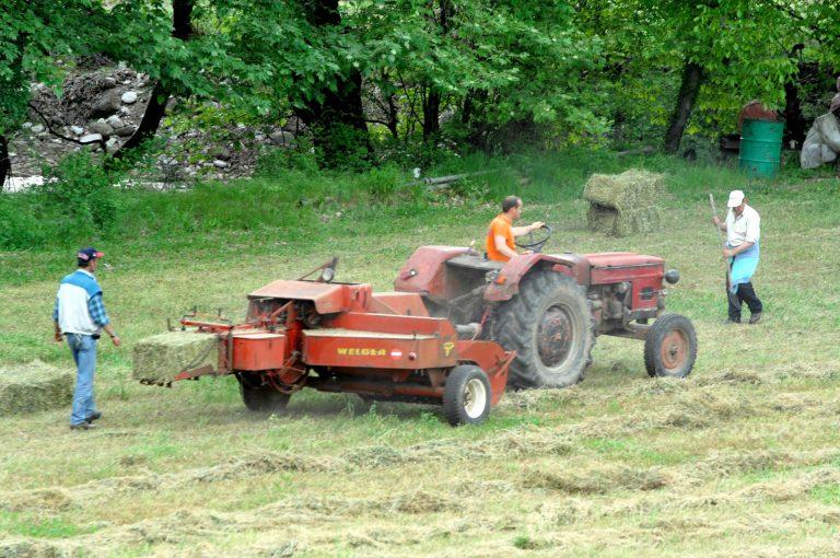 Από αύριο οι επιδοτήσεις στους αγρότες | Newsit.gr