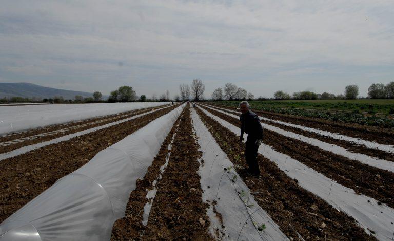Το Σάββατο καταβάλλεται στους αγρότες η δεύτερη δόση | Newsit.gr