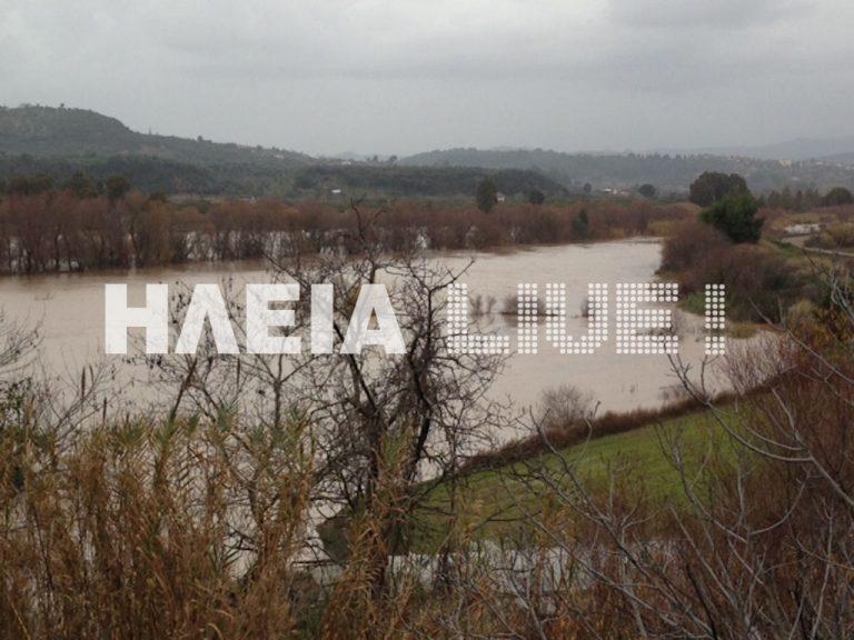 Ηλεία: Ο Αλφειός »πνίγει» κοπάδια και καταστρέφει περιουσίες! | Newsit.gr