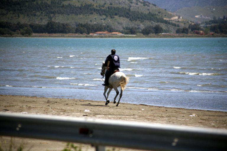 Καταδικάστηκε 59χρονος για κακοποίηση του αλόγου του | Newsit.gr