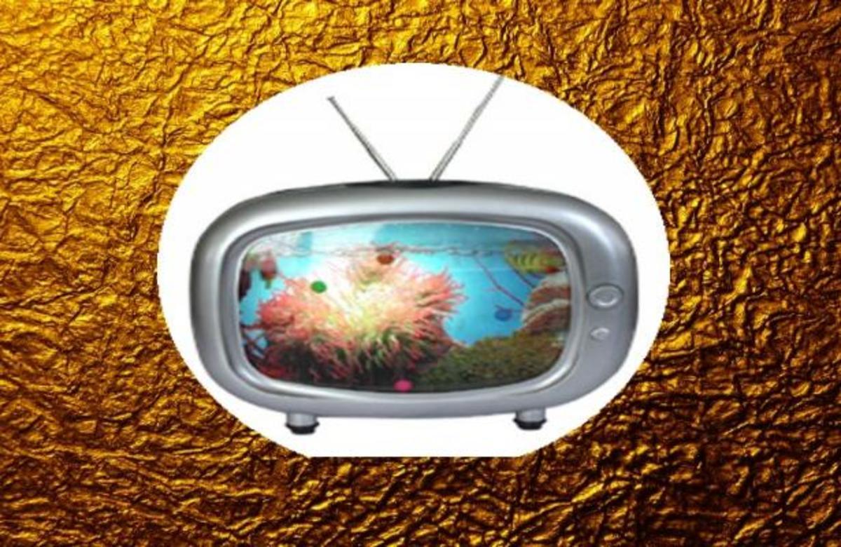 Η τελευταία »Χρυσή τηλεόραση» για το 2011!   Newsit.gr