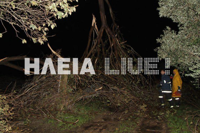 Ηλεία: Σφοδρή θύελλα «σήκωσε» αυτοκίνητο, δέντρα και κεραμίδια – ΦΩΤΟ και ΒΙΝΤΕΟ | Newsit.gr