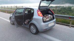 Οδηγούσε με 75 κιλά κάνναβης στο πίσω κάθισμα! Καταδίωξη στην Εγνατια [pics]