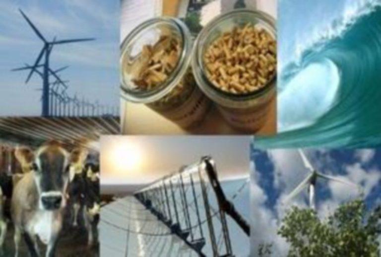 Η Κομοτηνή στο ευρωπαϊκό διασυνοριακό πρόγραμμα «Energynet» | Newsit.gr
